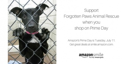 Amazon Prime Day!!