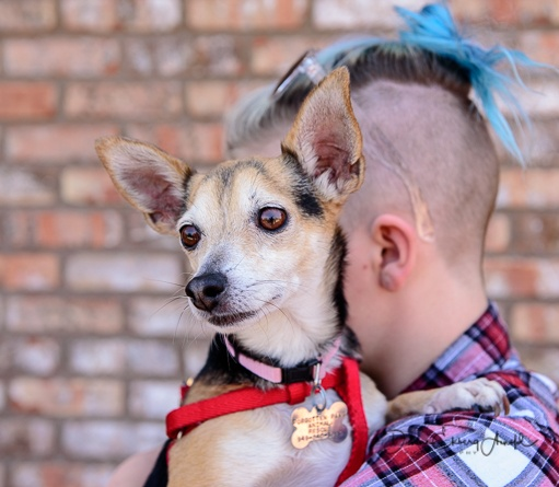FPAR Adoptable Dog Olivia