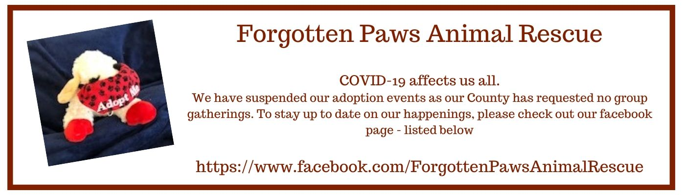 Forgotten Paws Animal Rescue